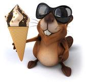 Beaver with icecream — Stock Photo