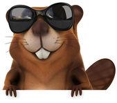 Beaver in sunglasses — Photo