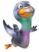 Fun pigeon thumbs down gesture — Stock Photo