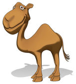 Fun camel — Stock Photo