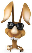 Fun rabbit in sunglasses — Stock Photo
