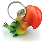 Green parrot with magnifying glass — Stock Photo