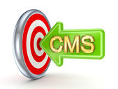 CMS concept. — Stock Photo