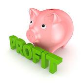 Profit concept. — Stock Photo