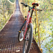 Red bike standing in suspension bridge - Stock Photo