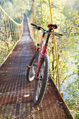 Red bike standing in suspension bridge — Stock Photo