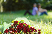 Bouquet red rose in the green grass. Couple in the background — Stock Photo