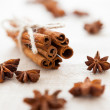 Pile of cinnamon sticks and cloves on homemade canvas — Stock Photo