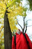 Giovane donna alzando attraverso alberi d'oro — Foto Stock