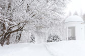 City park in the snow — Stock Photo
