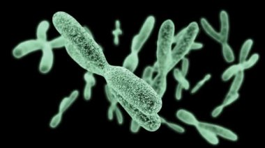 DNA under microscope — Stock Video