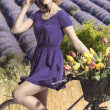 Portrait of pretty girl with bicycle . outdoor field lavander — Stock Photo