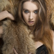 Fashion girl in lingerie with fur  — Stock Photo