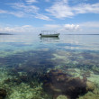 Boat over a shallow coral reef - Photo