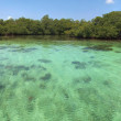 Panoramic view on shallow water — Stock Photo