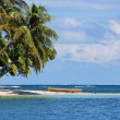 Tropical beach with a dugout canoe - Stok fotoğraf