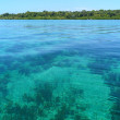 Transparent and calm waters - Stockfoto