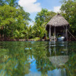 Boathouse with tropical vegetation — Stock Photo