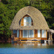 Thatched bungalow over water — Foto Stock
