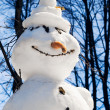 The snowman with a carrot nose — Stock Photo