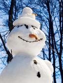O boneco de neve com um nariz de cenoura — Foto Stock