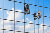 Window cleaners. — Stock Photo