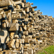 Stock Photo: Log deck
