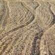 Plowed field — Stock Photo #19210313