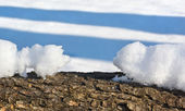 Melted snow drift similar to two small animals — Stock Photo
