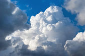 Cumulus cloud — Stock Photo