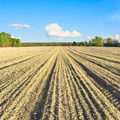 A plowed field — Stock Photo