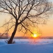 Winter sunrise — Stock Photo #33304703