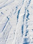 A blizzard — Stock Photo