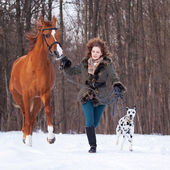 Girl with dog and horse — Stock Photo