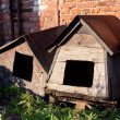 Two dog houses — 图库照片