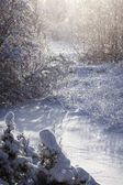 Ruská zima — Stock fotografie