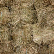 Stock Photo: Stocks of hay