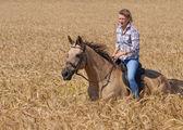 Young woman on horseback — Stok fotoğraf
