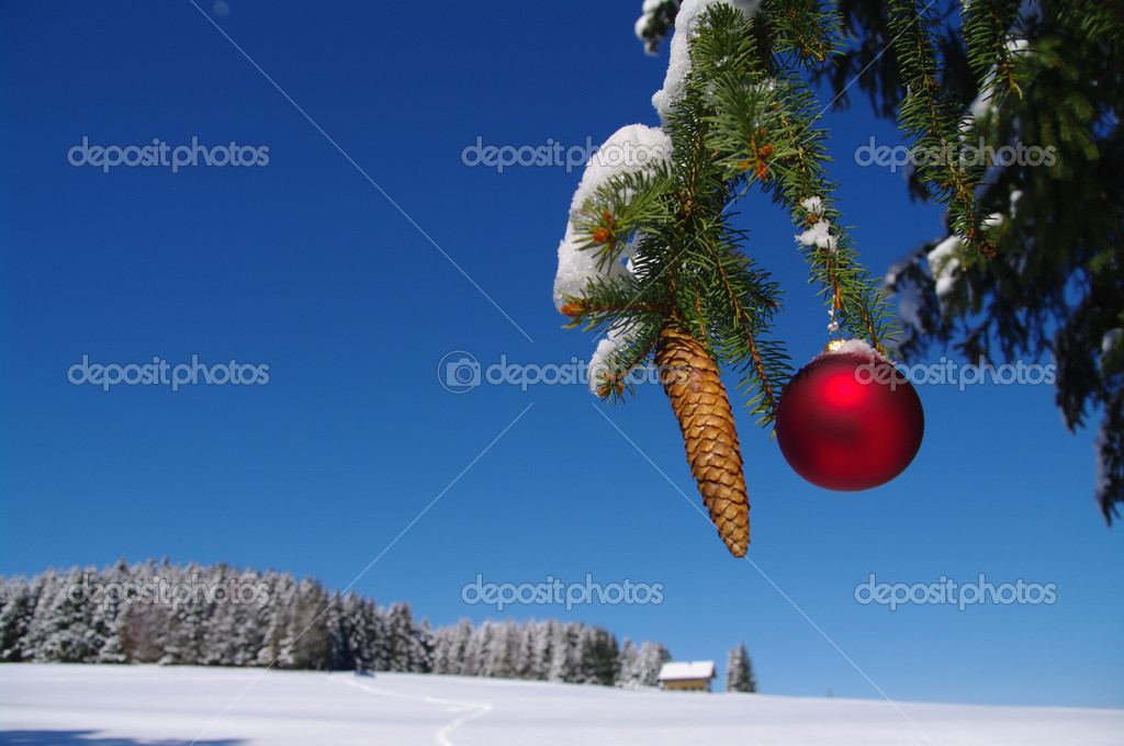 Red bauble christmas ball ornament outside in a snowy winter scene  Photo #13962052