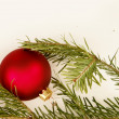 Bauble fir — Foto de Stock