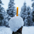 Yellow Candles In Snow — Stock Photo