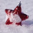 Christmas star winter — Stockfoto
