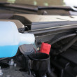 Coolant car filling - Stock Photo