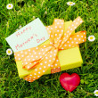 Mothers day gift box — Stock Photo
