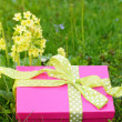 Mothers day gift box — Stock Photo #24549867