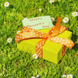 Mothers day gift box — Stock Photo #24782829
