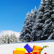 Xmas Christmas winter — Stock Photo