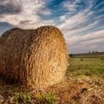 フィールドに大きな藁ボール — ストック写真