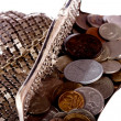 Stock Photo: Purse with coins