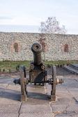 Ancient cannon on wheels. Dubno. Ukraine — Stock Photo
